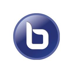Image result for big blue button logo