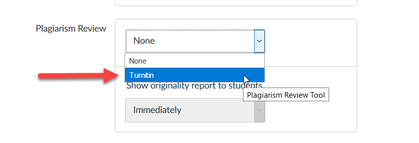 Selecting Turnitin on the plagiarism review dropdown menu