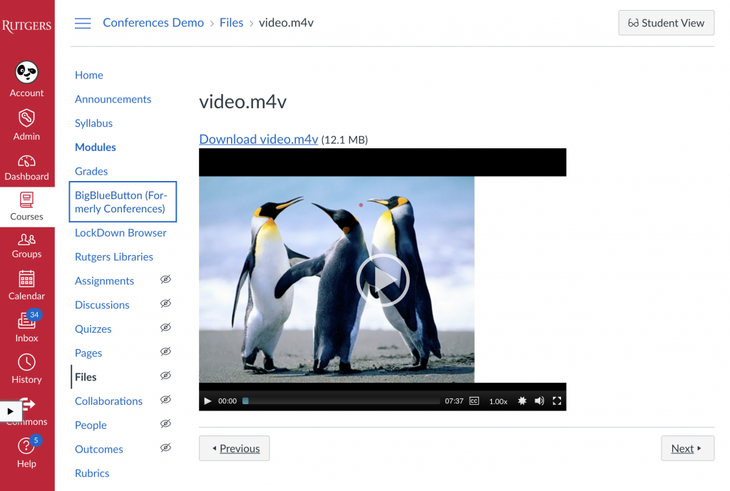 Video added to module and available for inline viewing