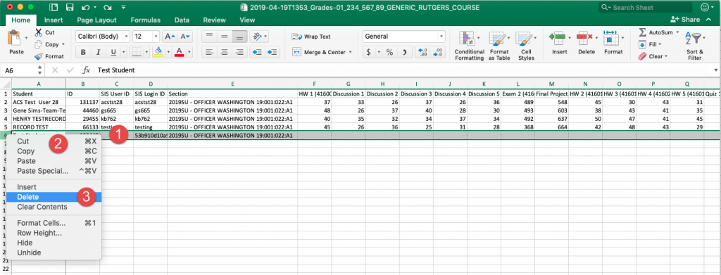 Canvas gradebook export in MS Excel with test student row highlighted