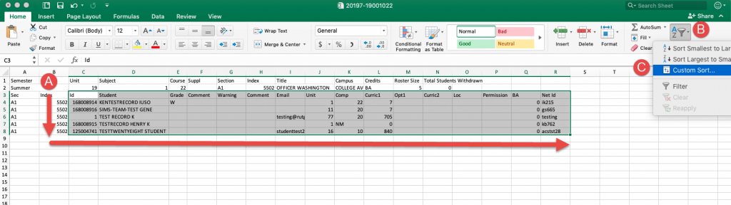 Roster open in Microsoft Excel with custom sort