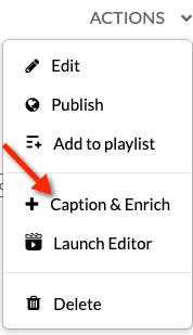 Kaltura actions menu expanded to show Caption & Enrich option
