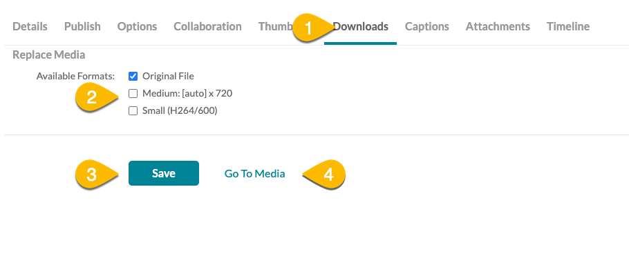 Kaltura download tab with arrows.